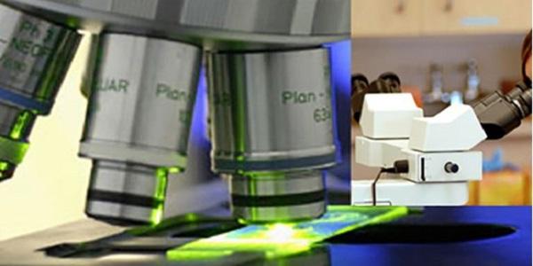 Secez Services-Strategic Electronics Defense Systems